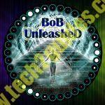 How-To Install kodi add-on BOB Unleashed